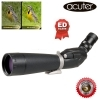 Acuter GrandVisa DS PRO DS 20-60x80 Angled ED WP Spotting Scope