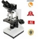Celestron Labs CB2000C Compound Microscope