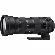 Sigma 150-600mm F5-6.3 SPORT DG OS HSM Lens - Canon Fit