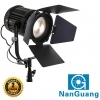 NanGuang CN100FC LED Bi-Colour Fresnel Light