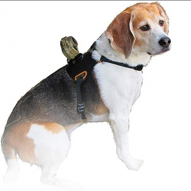 SpyPoint XCEL HD Dog Mount