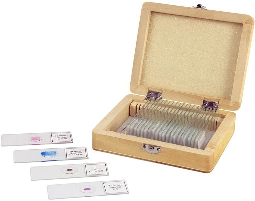 Celestron Prepared Microscope Slides 25 Piece Set