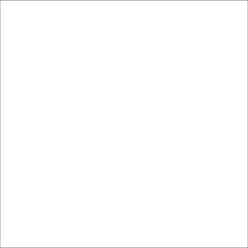 Dorr 1.35x11m White Paper Background